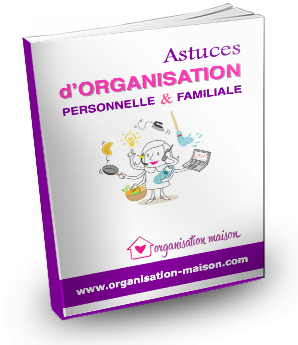 1er ebook d'organisation collaboratif
