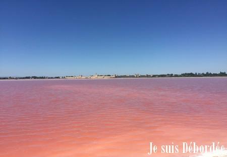 Les eaux colorés des marais salants