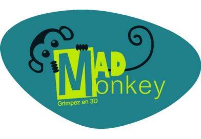 mad_monkey_01