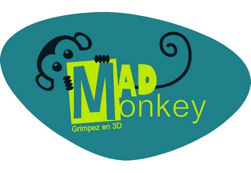 Mad Monkey, la grimpe en intérieur