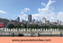 Balade sur le Saint Laurent à Montréal