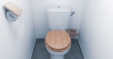 routine-ménage-WC