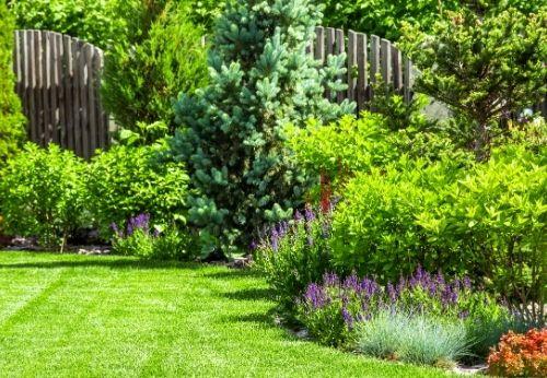 Finir de préparer le jardin pour l'été