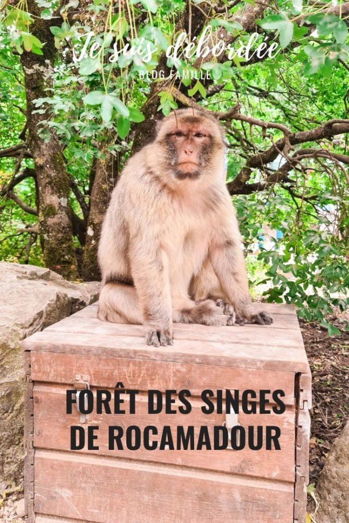 Forêt des Singes de Rocamadour